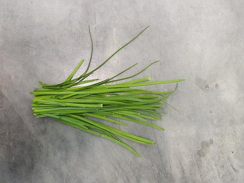 Nirá folha orgânico