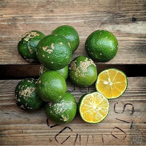 Limão galego - 400g - fresco, orgânico