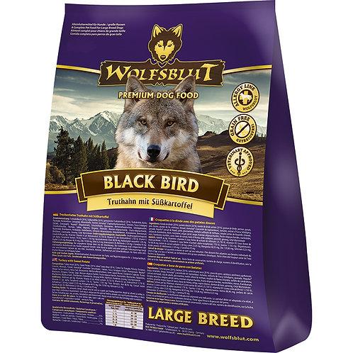 Black Bird Large 2x15kg - Truthahn