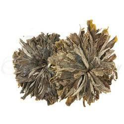 Enchanted Forest Flowering Tea