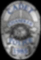 Cadet Badge 18.png