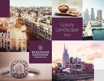 2020_LandscapeReport_edited.jpg