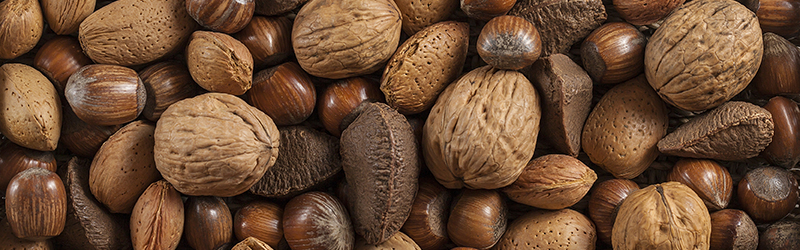Tree-Nuts_KYC_Featured_Image