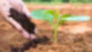 Fertilizer-Stocks-Could-Lift-Agribusines