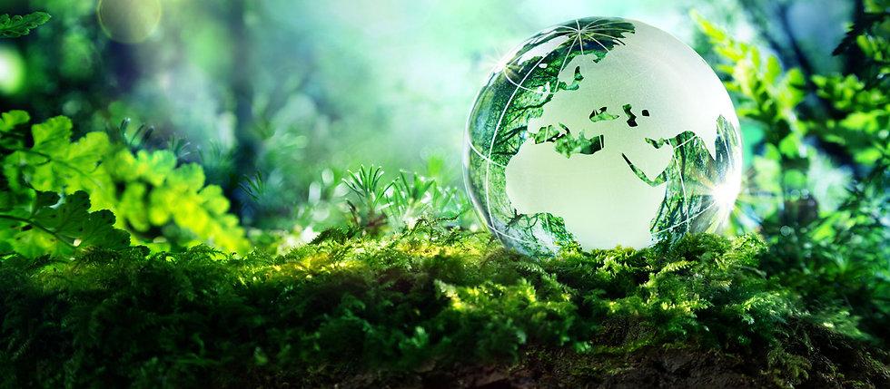 Environmental-Studies-Banner1.jpg