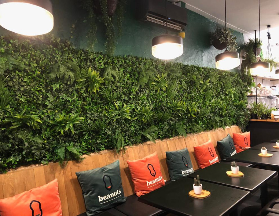 Beanuts Green Wall.jpg