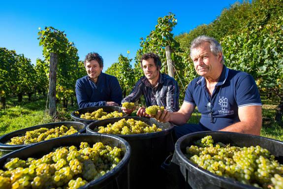 Famille Orion Père et FIls dans les vignes