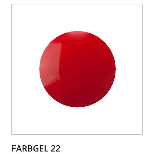 Farbgel 22