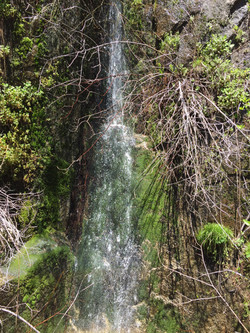 Seven Circles Sequoia National Park