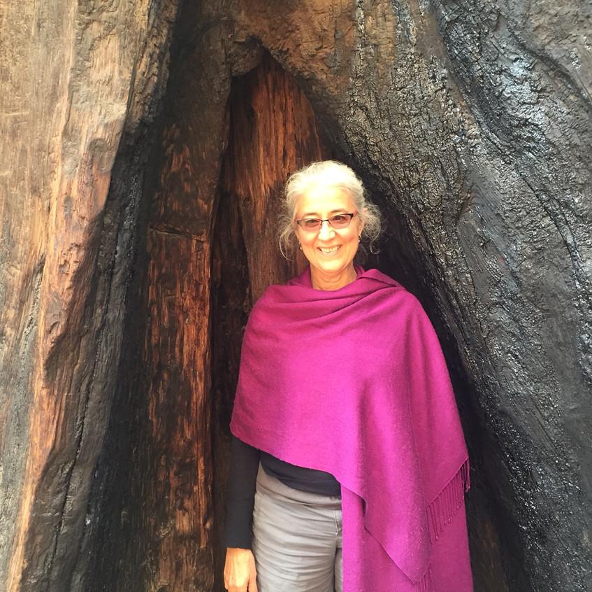 Yoga Teacher Sequoia