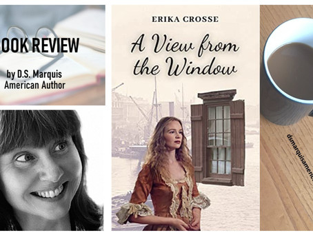 What I Read: DS Marquis' Book Review of A View from the Window by Erika Crosse