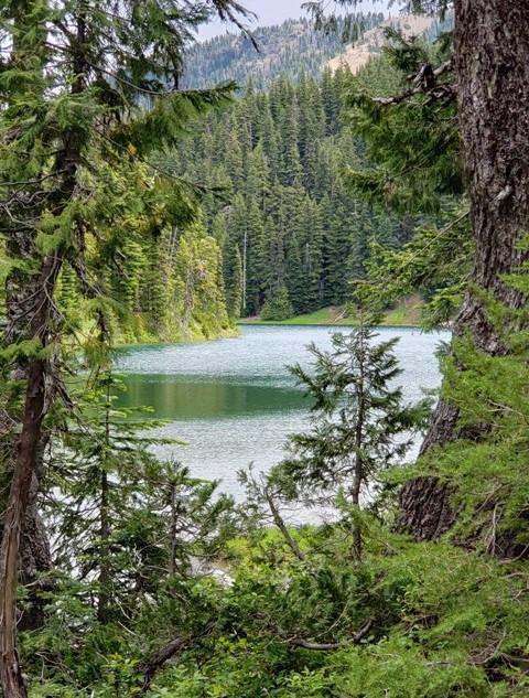 Surprise Lake Conrad Meadows