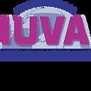 International Ultraviolet Association
