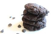 Double Chocolate Sunbutter Cookies