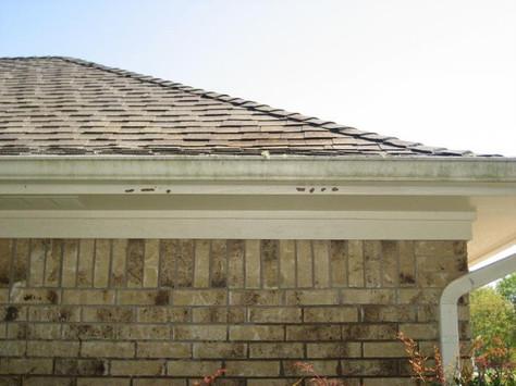 External Home Gutter Before 1.jpg