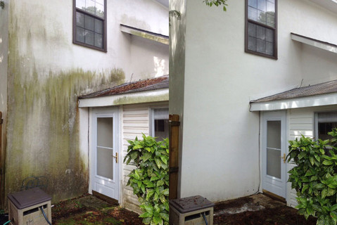 House Cleaning - Algae (Before and After