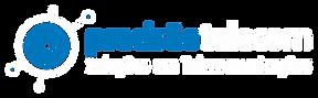 Logo_Precisao-Branco.png