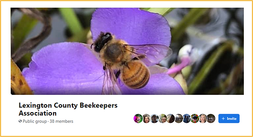 LCBA Facebook Group Page for Beekeepers