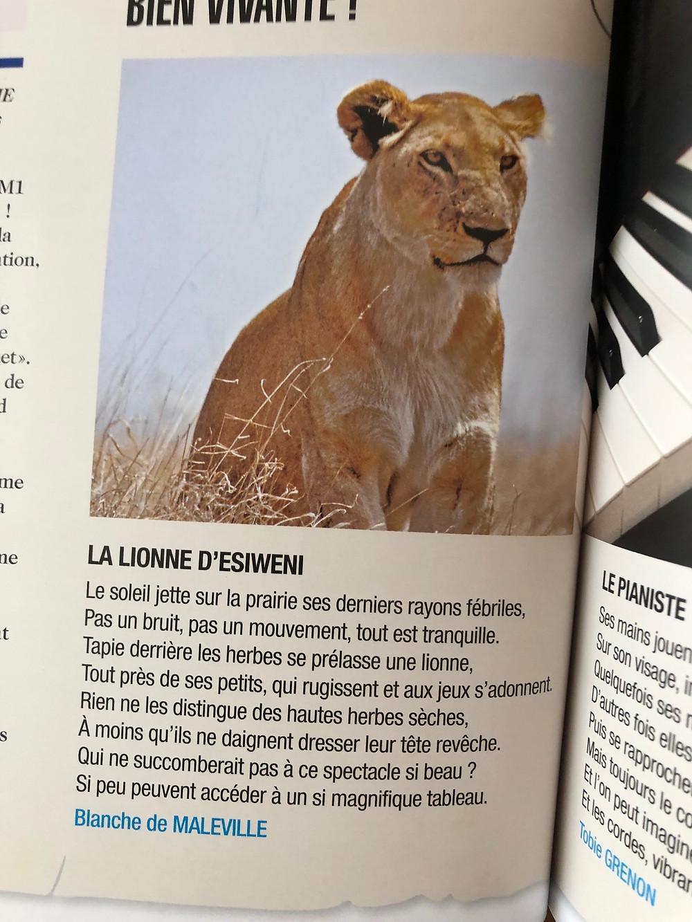Esiweni's Lionnes
