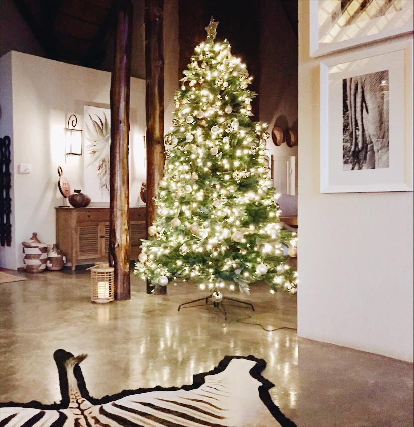 Christmas Tree/ Sapin de Noel