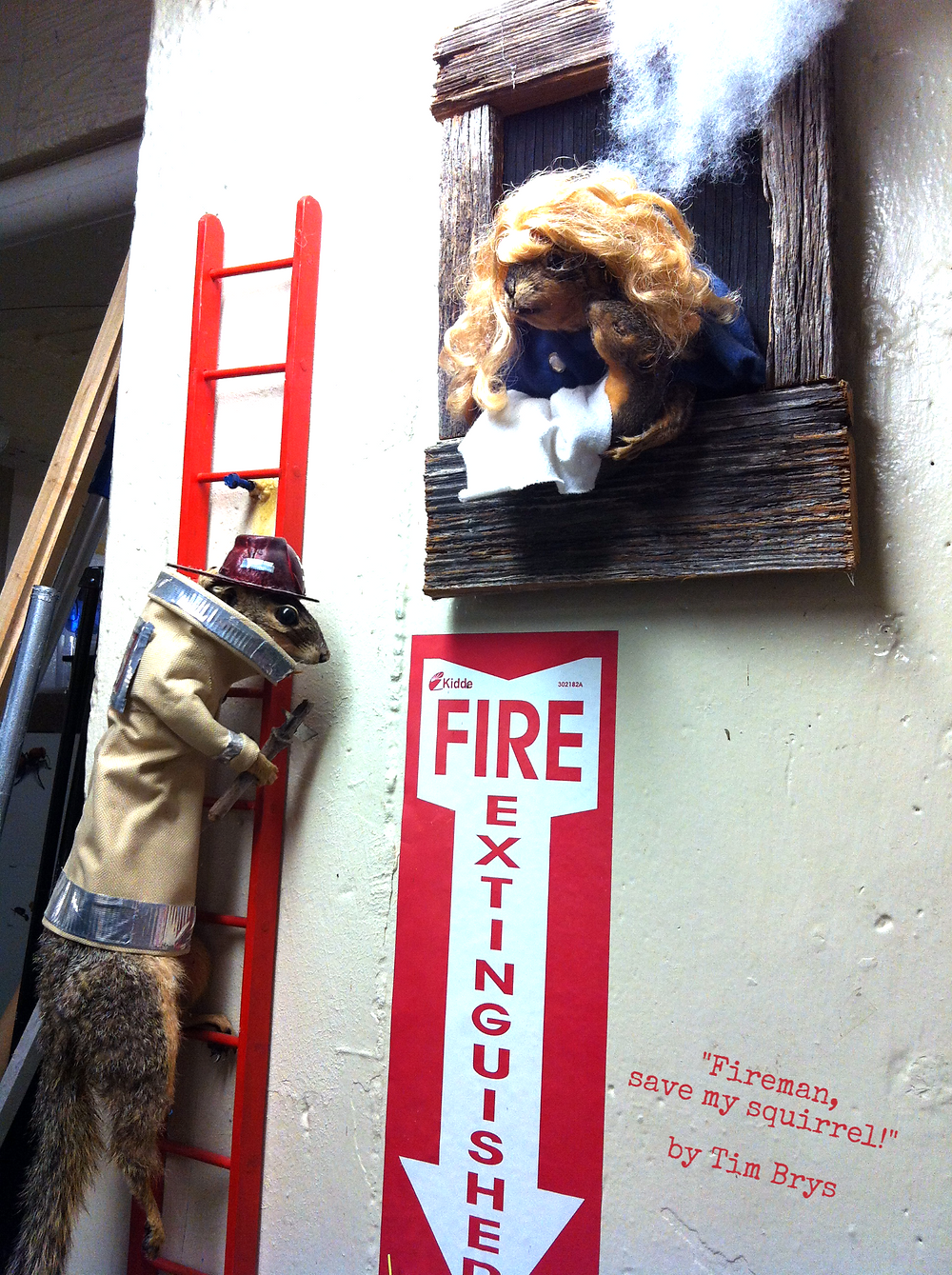 """Fireman, Save My Squirrel"" by Tim Brys_edited"