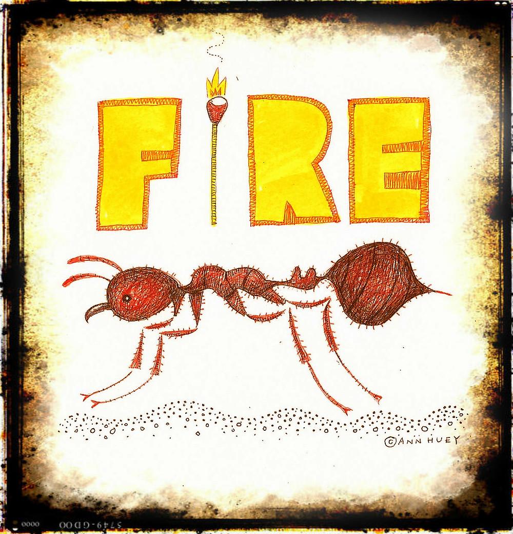 fire w1.jpg