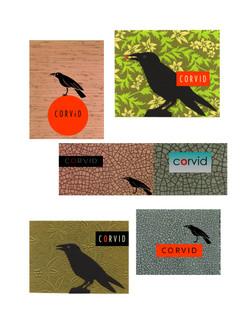 logo concepts