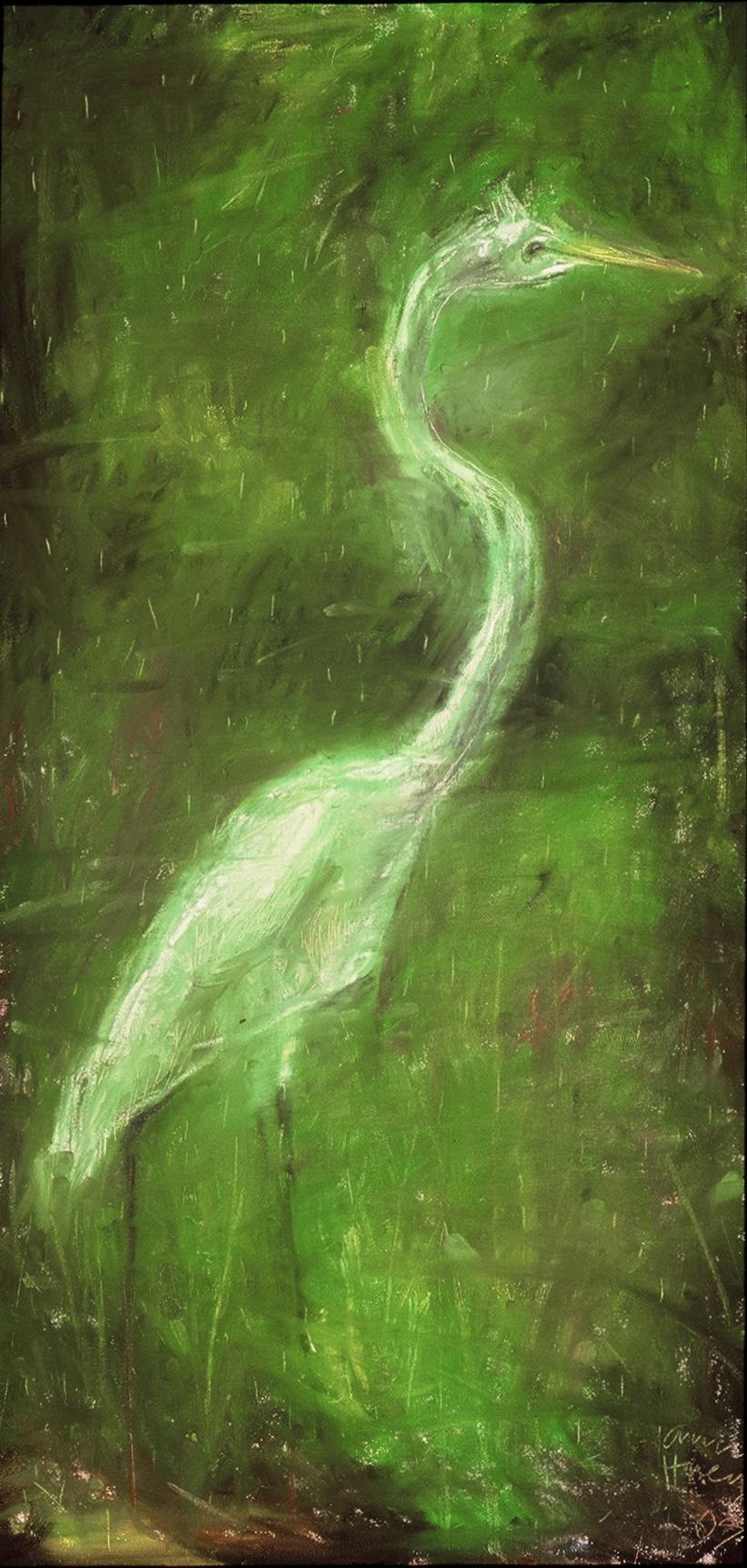 Great Egret in the Rain