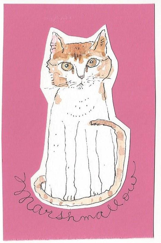Marshamallow on pink.jpg
