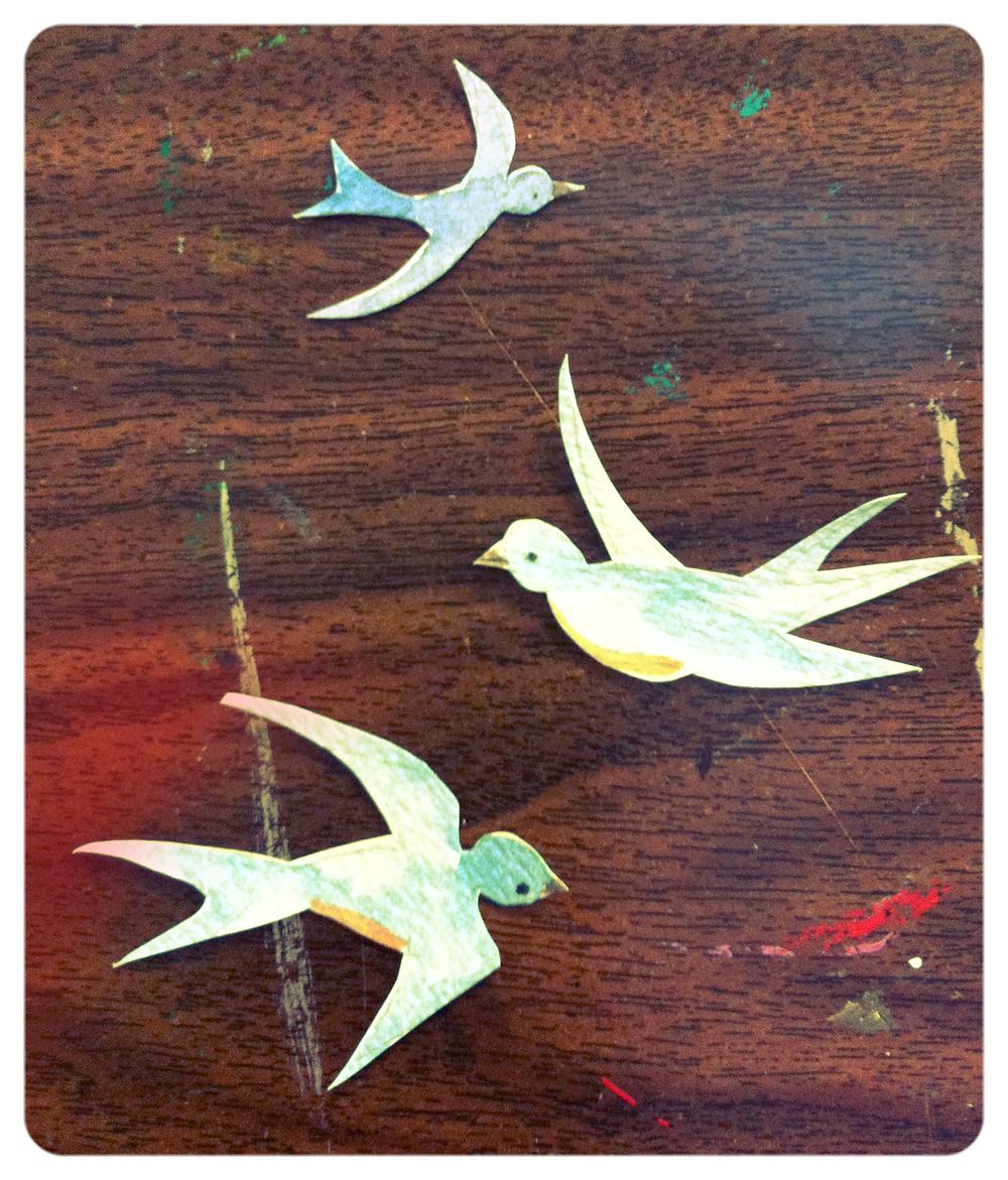 cut out birds_edited