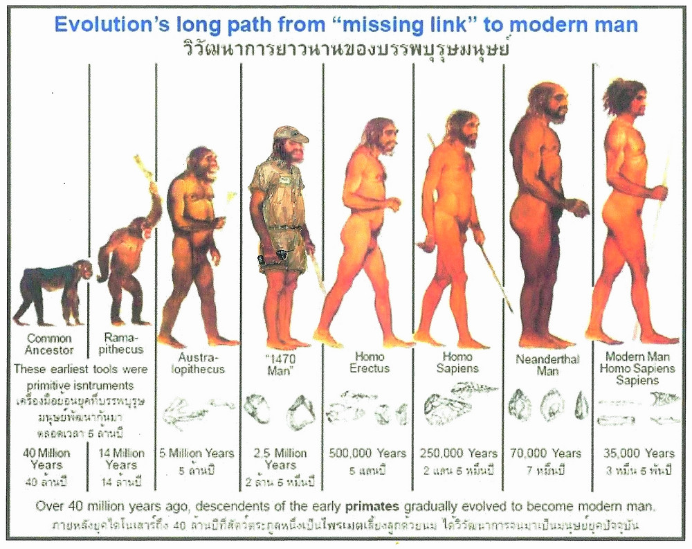 "Is Tim Brys the ""Missing Link""?"
