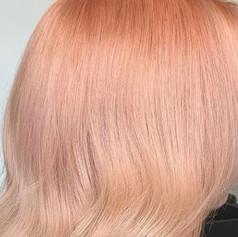 Apricot Candy 1