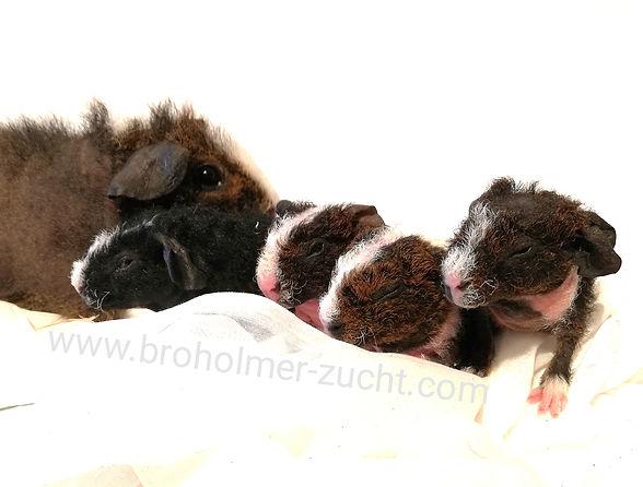 Skinny Werwolf Familie.jpg