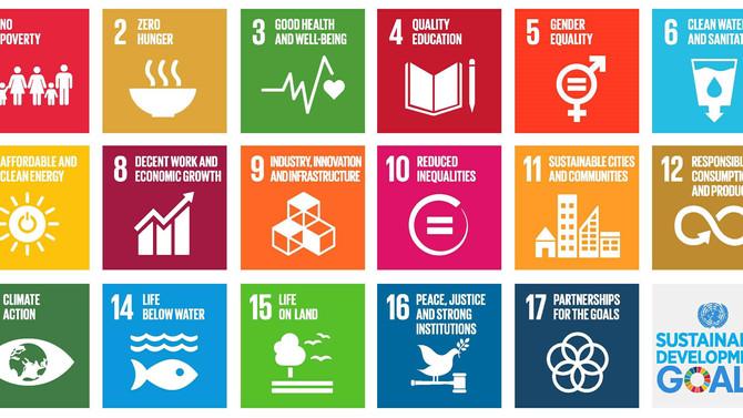 VerifiK8's commitment to the UN Sustainable Development Goals