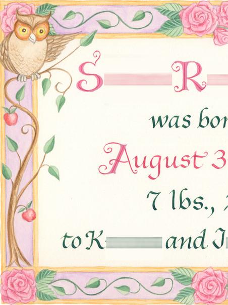 Baby Birth Certificate