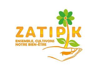 ZATIPIK-09_Plan de travail 1.jpg