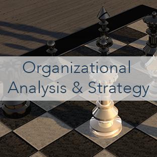 Organizational Analysis & Strategy.png
