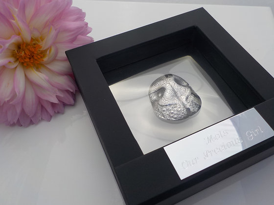YOUR dog's nose in silver (Framed)