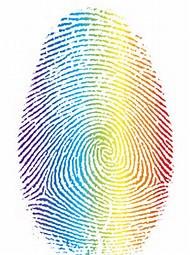 What is in a fingerprint?