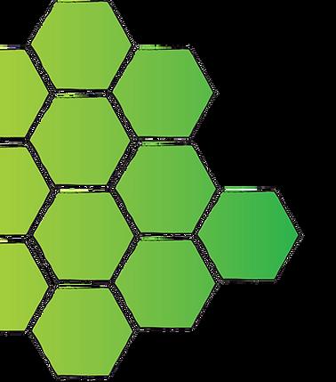 RFS logo-trans-rt.png