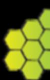 RFS logo-trans-left.png