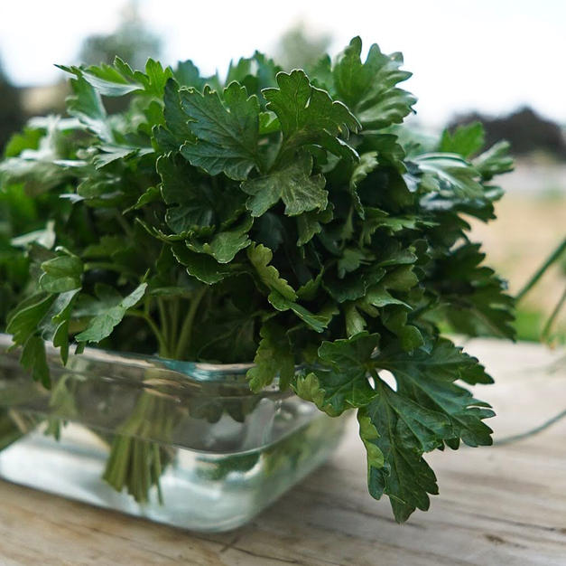 Parsley at the Farm Stand