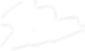 Logo Lightning White.png