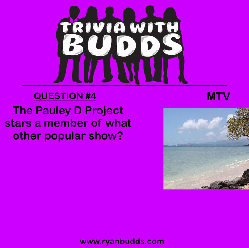 MTV REALITY ANSWERS.005