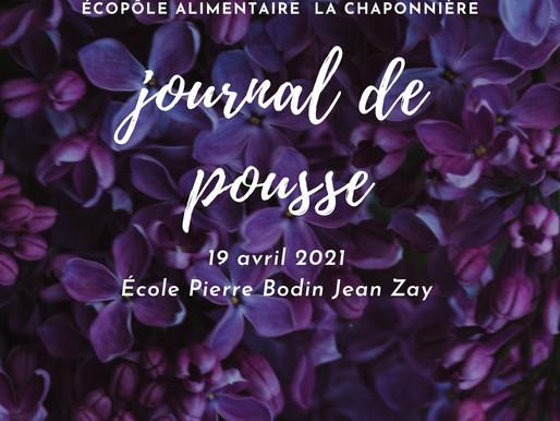 Journal de pousse - 19 avril 2021