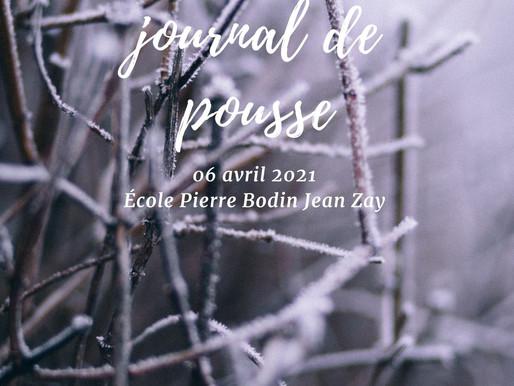 Journal de pousse - 6 avril 2021