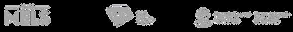 logos_partenaires_blanc_ESR_edited_edite