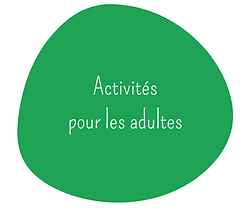 adultes cmrl centre multi-ressources de lachine obnl québec