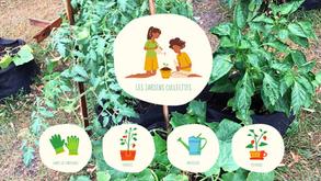 Un jardin collectif pour cultiver les valeurs