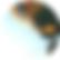 psicologo psicoterapia roma centocelle prenestina